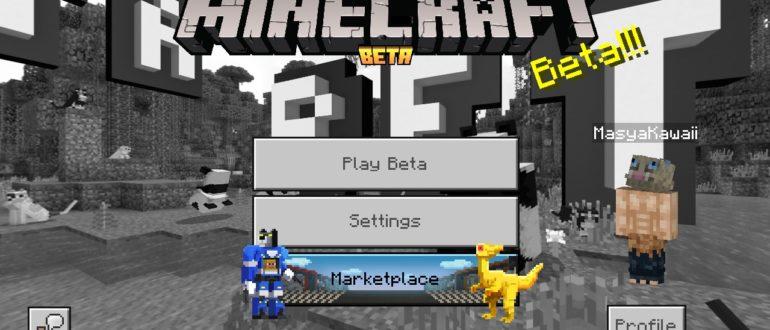 Minecraft 1.16.0.53 скачать